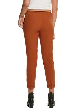 Pant Only Focus Camel For Woman
